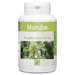Marrube blanc 200mg x 200 gélules
