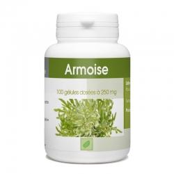 Armoise - 100 gél. x 250 mg