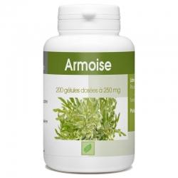 Armoise - 200 gél. x 250 mg