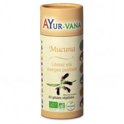 Mucuna Pruriens Bio - 300 mg x 60 gélules