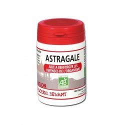 Astragale - 325 mg x 60 gélules végétales