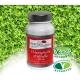 Chlorophylle d'Alfalfa - 500 mg x 60 gélules