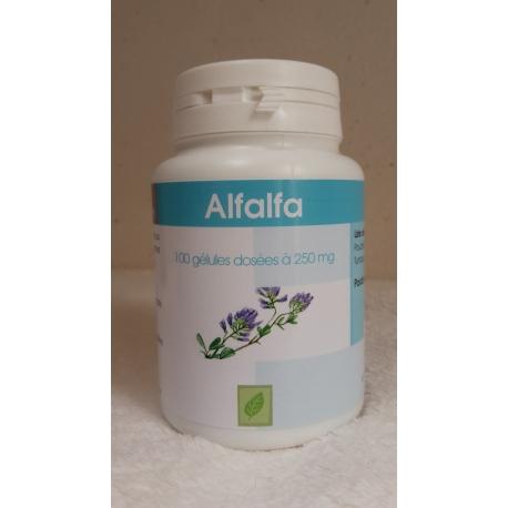 ALFALFA 100 gél. x 250 mg