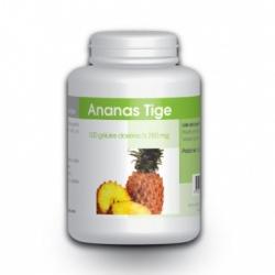 ANANAS TIGE 100 gél. x 280 mg