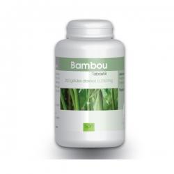 Bambou Tabashir 250mg x 200 gélules