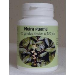 Muira Puama - 250 mg x 100 gélules