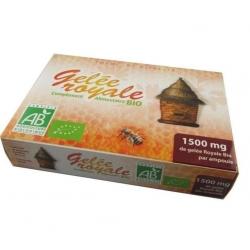 Gelée Royale Bio (20 ampoules)