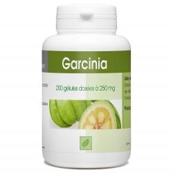 Garcinia 250 mg x 200 gélules