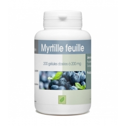 Myrtille Feuille - 200 mg x 200 gélules