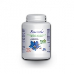 Bourrache Huile - 503 mg x 100 mg
